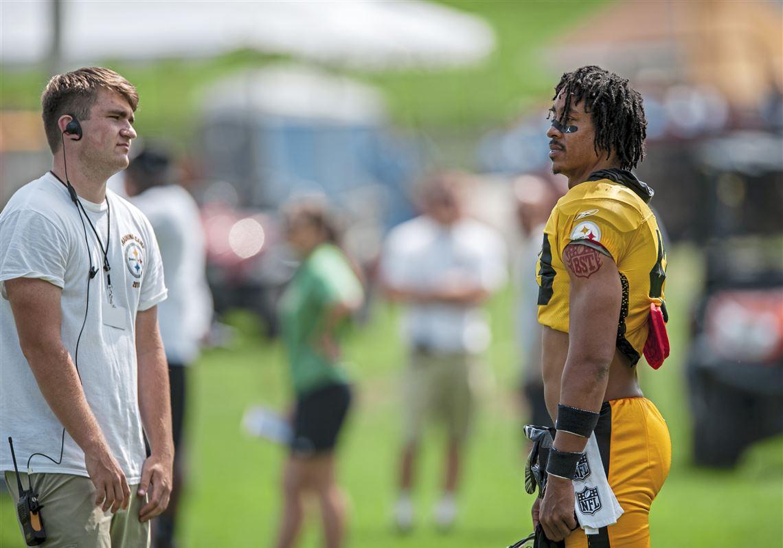 Troy Polamalu Pittsburgh Steelers Standz AAQB118